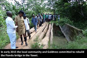 NEWS-Goldtree-Fiondu-bridge-in-the-Yawei-before